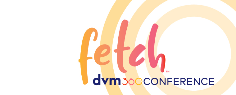 Introducing the new Fetch dvm360 conference app