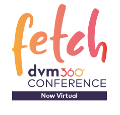 Fetch Logo Virtual (002)